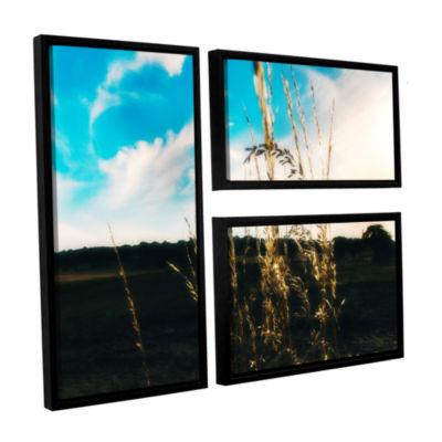 Brushstone Field 3-pc. Flag Floater Framed CanvasWall Art
