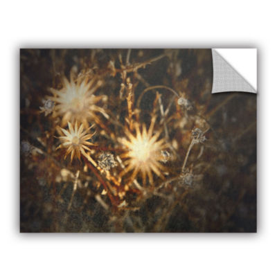Brushstone Falling Towards Stars Removable Wall Decal