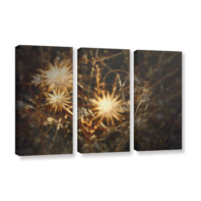 Brushstone Falling Towards Stars 3-pc. Gallery Wrapped Canvas Wall Art