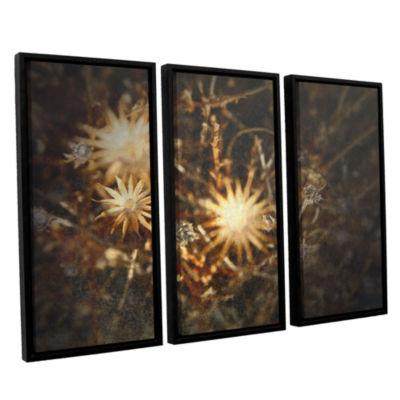 Brushstone Falling Towards Stars 3-pc. Floater Framed Canvas Wall Art
