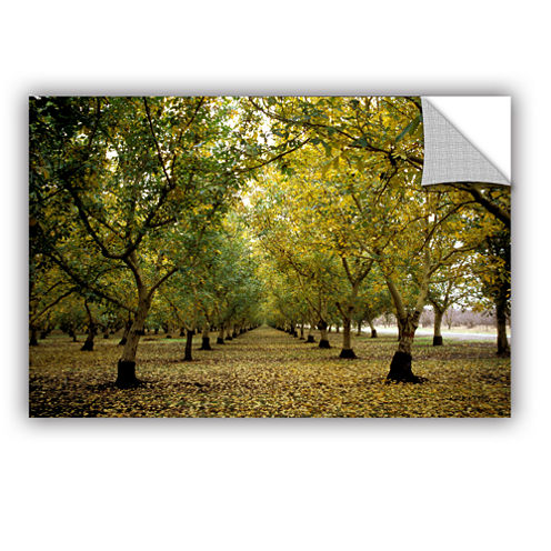 Brushstone Fall Orchard Removable Wall Decal
