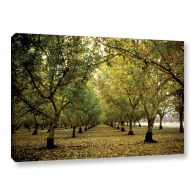 Brushstone Fall Orchard Gallery Wrapped Canvas Wall Art