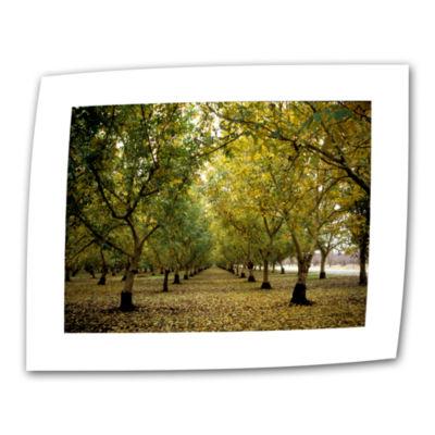 Brushstone Fall Orchard Canvas Wall Art