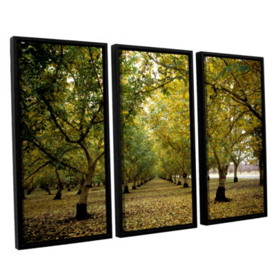 Brushstone Fall Orchard 3-pc. Floater Framed Canvas Wall Art