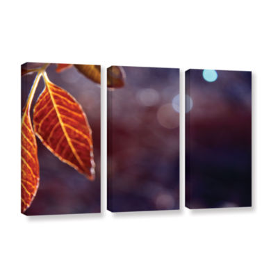 Brushstone Fall Lights 3-pc. Gallery Wrapped Canvas Wall Art