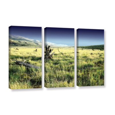 Brushstone Fall Creeps 3-pc. Gallery Wrapped Canvas Wall Art