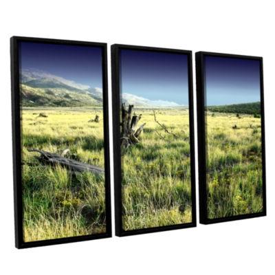 Brushstone Fall Creeps 3-pc. Floater Framed CanvasWall Art