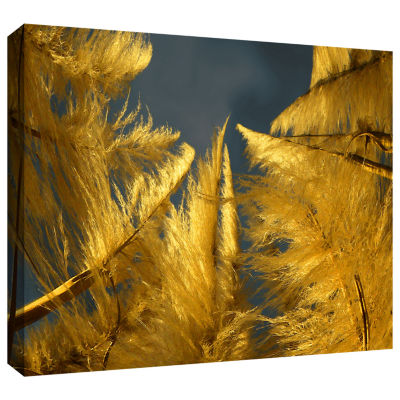 Brushstone Eye Of The Storm Gallery Wrapped CanvasWall Art