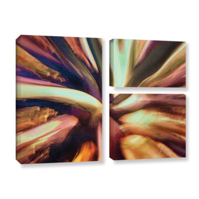 Brushstone Espectro Suculenta 3-pc. Flag Gallery Wrapped Canvas Wall Art