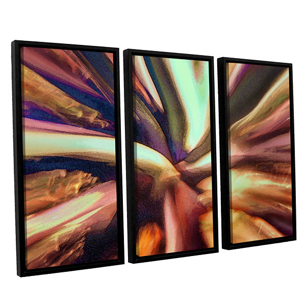 Brushstone Espectro Suculenta 3-pc. Floater FramedCanvas Wall Art