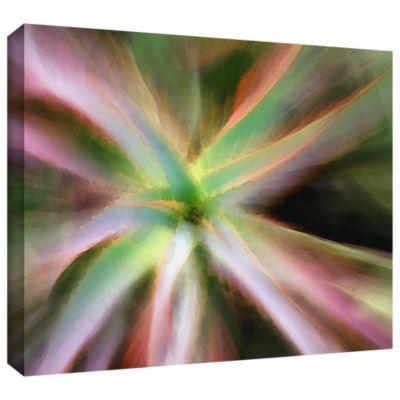 Brushstone Estrella Suculenta Gallery Wrapped Canvas Wall Art