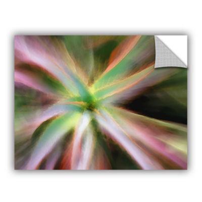 Brushstone Estrella Suculenta Removable Wall Decal