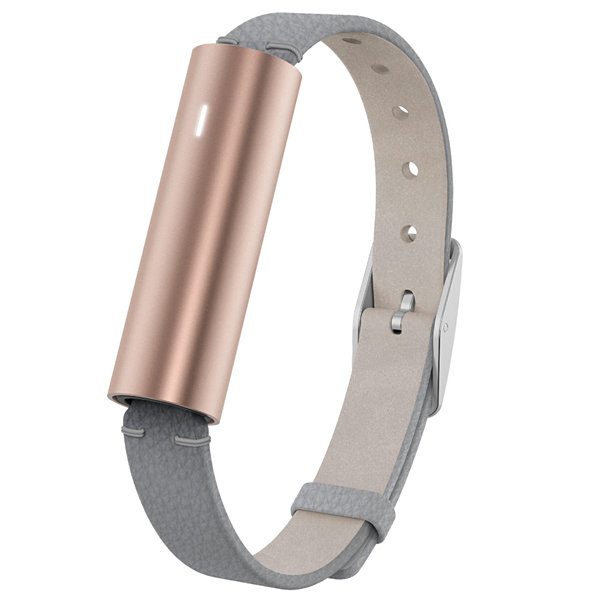 Misfit Ray With Leather Band Fitness Tracker