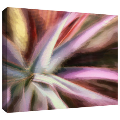 Brushstone 232-Arco Suculenta Gallery Wrapped Canvas Wall Art