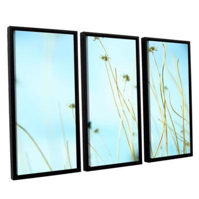 30 Second Daydream 3-pc. Floater Framed Canvas Wall Art