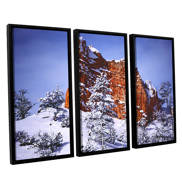 After the Storm 3-pc. Floater Framed Canvas Wall Art