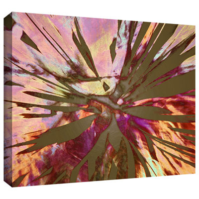 Brushstone Abini Succulent Gallery Wrapped CanvasWall Art