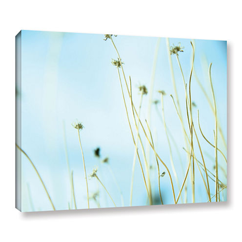30 Second Daydream Gallery Wrapped Canvas Wall Art