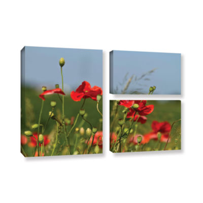 Brushstone 3097A 3-pc. Flag Gallery Wrapped CanvasWall Art