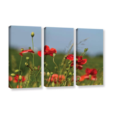 Brushstone 3097A 3-pc. Gallery Wrapped Canvas WallArt