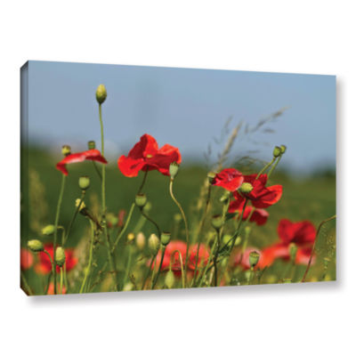 Brushstone 3097a Gallery Wrapped Canvas Wall Art