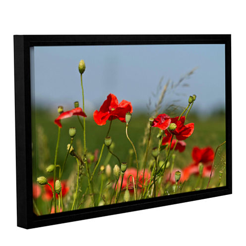 3097A Gallery Wrapped Floater-Framed Canvas Wall Art