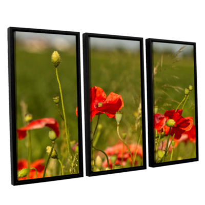 Brushstone 3114a 3-pc. Floater Framed Canvas WallArt