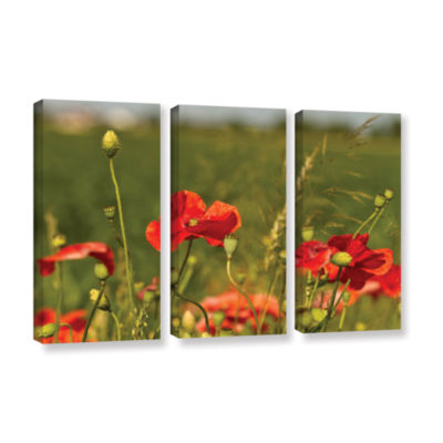 3114A 3-pc. Gallery Wrapped Canvas Wall Art