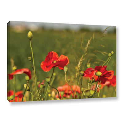 Brushstone 3114a Gallery Wrapped Canvas Wall Art