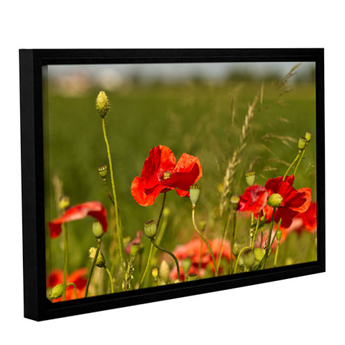 3114A Gallery Wrapped Floater-Framed Canvas Wall Art