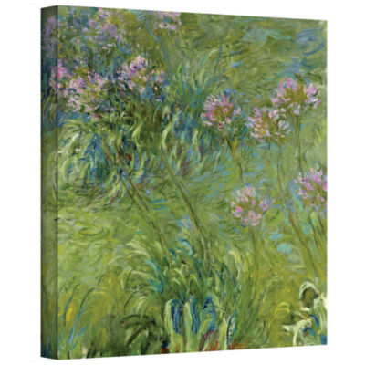 Brushstone Agapanthus 2 Gallery Wrapped Canvas Wall Art