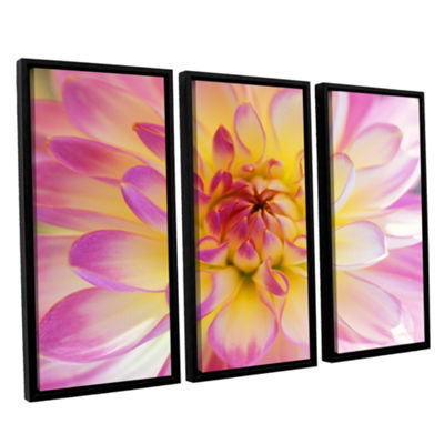 Brushstone All Dahled Up 3-pc. Floater Framed Canvas Wall Art