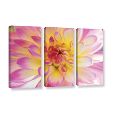 All Dahled Up 3-pc. Gallery Wrapped Canvas Wall Art