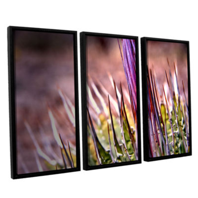 Brushstone Agave 3-pc. Floater Framed Canvas WallArt