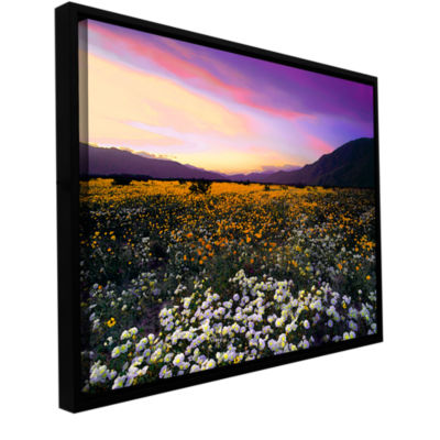 Brushstone ADJ borrego desert spring Gallery Wrapped Floater-Framed Canvas Wall Art