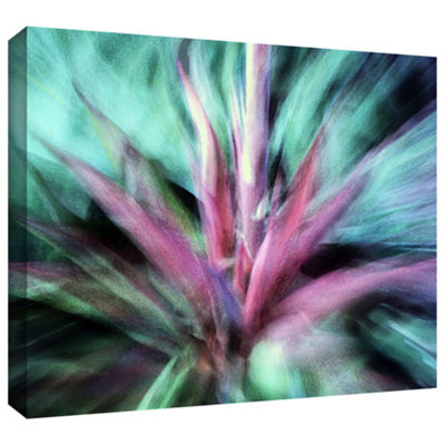 Brushstone Agave Manana Gallery Wrapped Canvas Wall Art