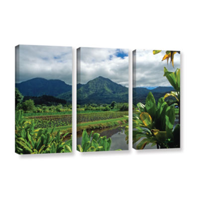 Brushstone A Taro Farm in Hanalei 3-pc. Gallery Wrapped Canvas Wall Art