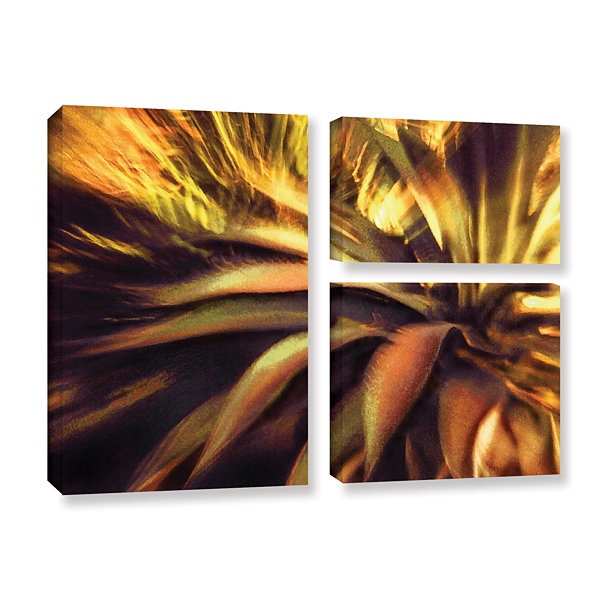 Brushstone Agave Puesta 3-pc. Flag Gallery WrappedCanvas Wall Art