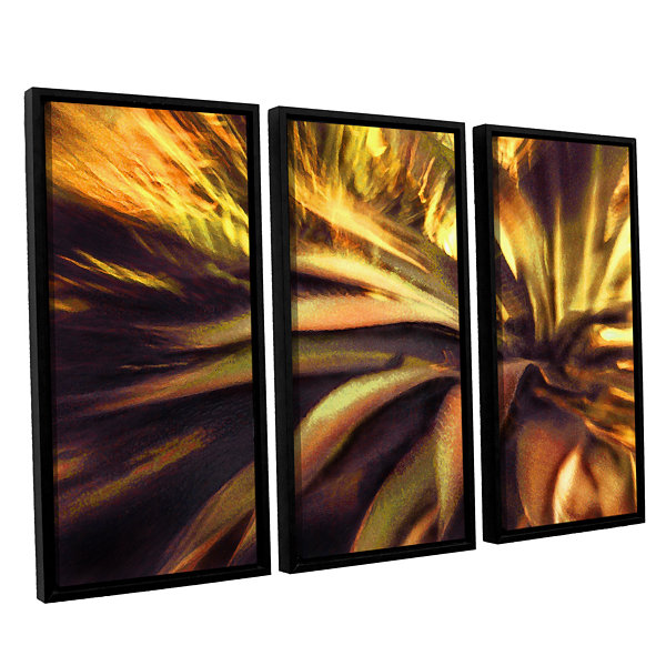 Brushstone Agave Puesta 3-pc. Floater Framed Canvas Wall Art