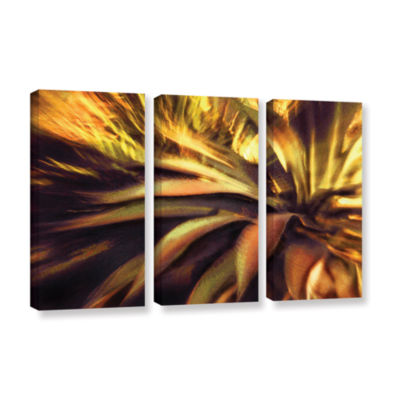 Agave Puesta 3-pc. Gallery Wrapped Canvas Wall Art