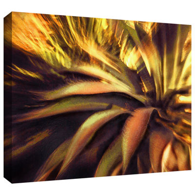 Brushstone Agave Puesta Gallery Wrapped Canvas Wall Art