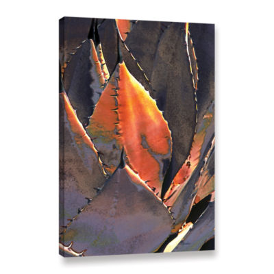 Brushstone Agave Sunset Gallery Wrapped Canvas Wall Art