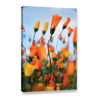 Brushstone African Daisy 2 Gallery Wrapped CanvasWall Art