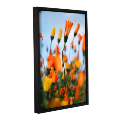 Brushstone African Daisy 2 Gallery Wrapped Floater-Framed Canvas Wall Art
