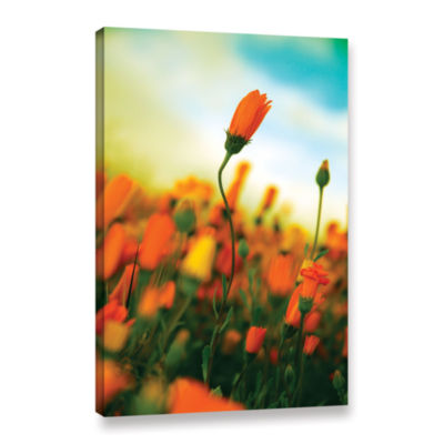 Brushstone African Daisy Gallery Wrapped Canvas Wall Art