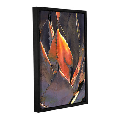 Brushstone Agave Sunset Gallery Wrapped Floater-Framed Canvas Wall Art