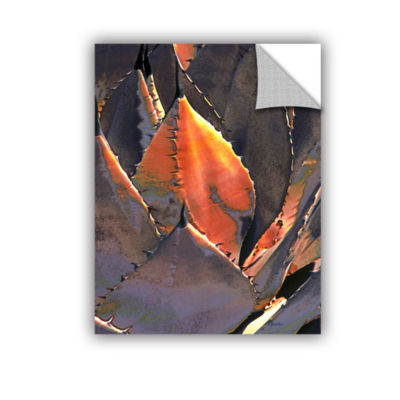 Brushstone Agave Sunset Removable Wall Decal