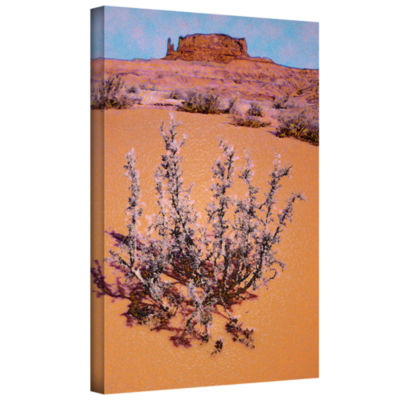 Brushstone After desert rain Gallery Wrapped Canvas Wall Art