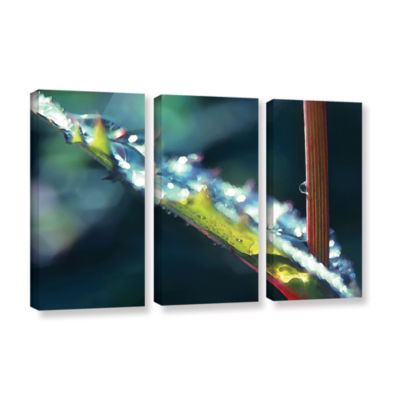 Brushstone After Garden Rain 3-pc. Gallery WrappedCanvas Wall Art