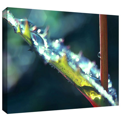 Brushstone After Garden Rain Gallery Wrapped Canvas Wall Art